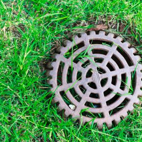 Sewer drain in grass